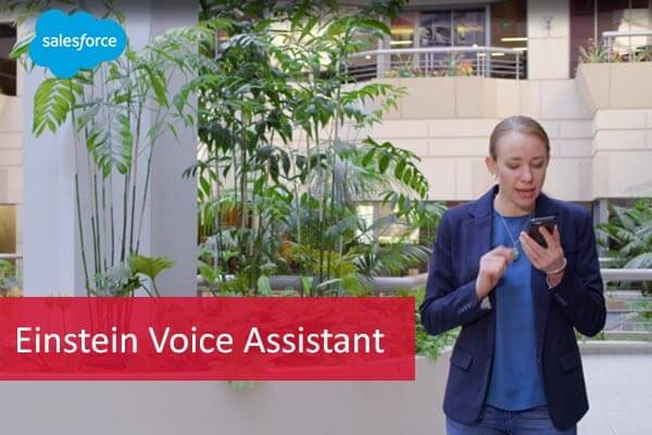 Salesforce-Einstein-Voice-Assistant-comselect-blog_2019