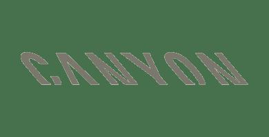Salesforce Bonn Referenz - Canyon