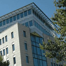 Salesforce Frankfurt CRM Beratung