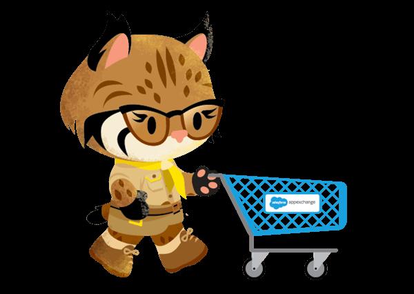 appexchange-basics-shopping